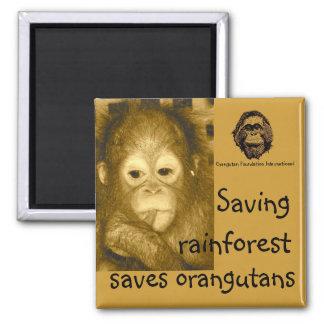 Selva tropical y orangutanes imán para frigorífico