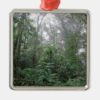 selva verde ornamentos de navidad