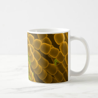 SEM image of Tradescantia Pollen and Stamens Coffee Mug