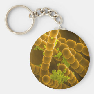 SEM image of Tradescantia Pollen and Stamens Keychain