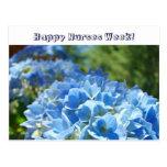 ¡Semana feliz de las enfermeras! Hydrangeas del az Tarjeta Postal