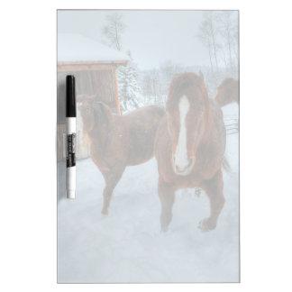 Semental amoroso divertido y caballos reacios de pizarras