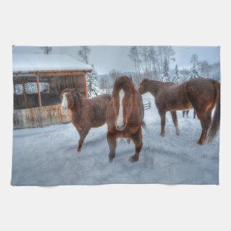 Semental amoroso divertido y caballos reacios de toallas de cocina