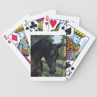 Semental árabe negro joven baraja de cartas