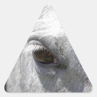 Semental cuarto gris del caballo pegatina triangular