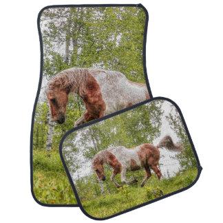 Semental de la pintura del Palomino y caballo Alfombrilla De Auto