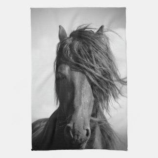 Semental frisio en el viento toallas de mano