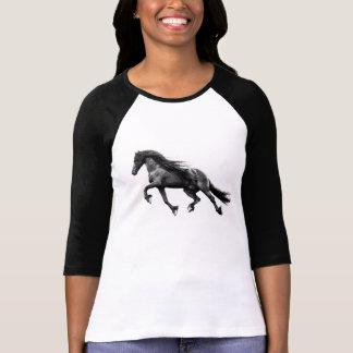 Semental frisio negro - camiseta friese del caball