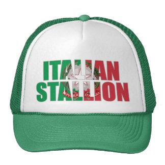 Semental italiano gorras de camionero