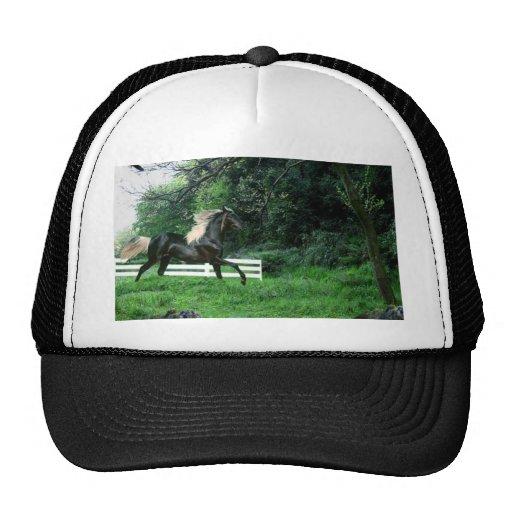 Semental negro gorras