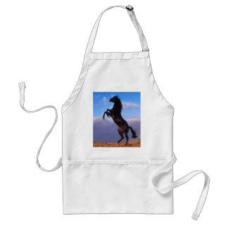 Semental negro salvaje que alza el caballo delantales