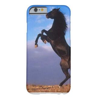 Semental negro salvaje que alza el caballo funda de iPhone 6 barely there