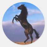 Semental negro salvaje que alza el caballo etiqueta redonda