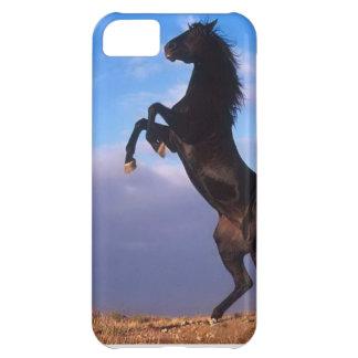 Semental negro salvaje que alza la caja del iPhone Funda Para iPhone 5C