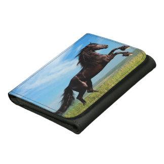 semental negro y salvaje que alza el caballo