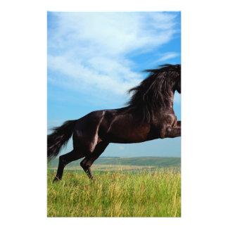 """semental negro y salvaje que alza el caballo folleto 5.5"""" x 8.5"""""""