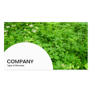 Semi-circle Panel - Woodland Undergrowth in Spring Business Card