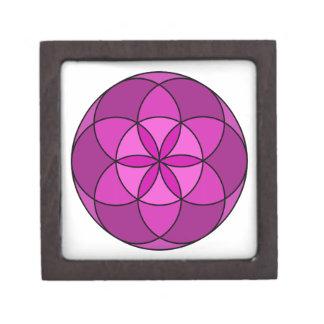 Semilla de la violeta multi de la vida caja de joyas de calidad