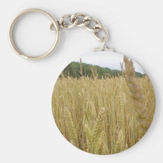 Semilla del trigo llavero redondo tipo pin