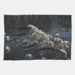 semillas congeladas toallas de mano