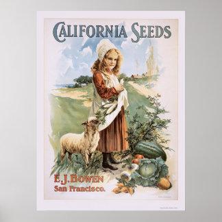 Semillas de California Póster