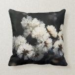 Semillas de flor de Frost Cojin