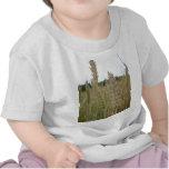Semillas de la planta del trigo camiseta