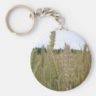 Semillas de la planta del trigo llavero redondo tipo pin