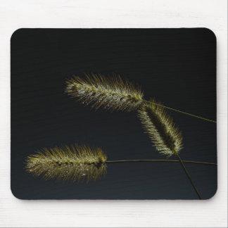 Semillas de la vida mousepad