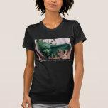 Seminole Indian Tribal Art Florida Womens T-Shirt