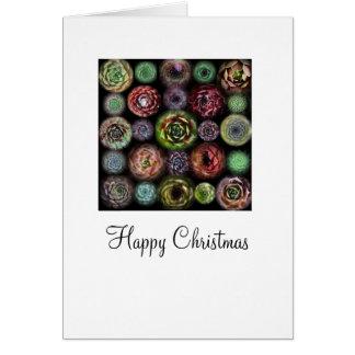 Sempervivum Christmas Card