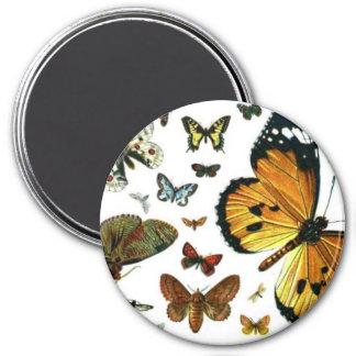 Señal anticuaria de la imagen de las mariposas col imán redondo 7 cm