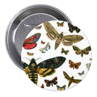 Señal anticuaria de la imagen de las mariposas col pins