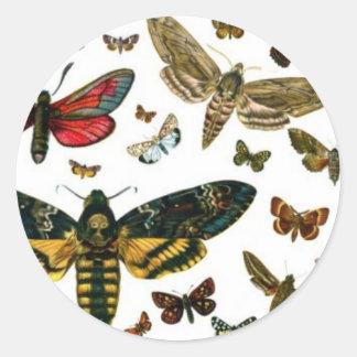 Señal anticuaria de la imagen de las mariposas pegatina redonda
