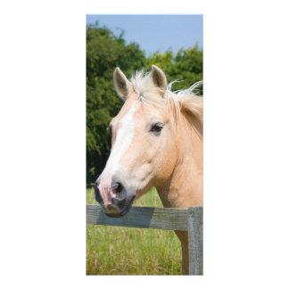 Señal conocida de encargo de caballo del palamino  diseño de tarjeta publicitaria