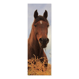 Señal cuarta del caballo tarjetas de visita mini