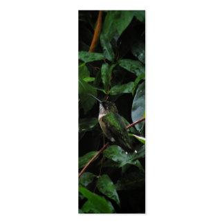 Señal de la acuarela del colibrí tarjeta de visita
