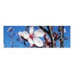 Señal de la flor de cerezo 2 plantilla de tarjeta personal