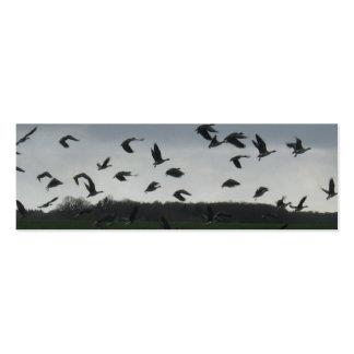 Señal de la foto de los pájaros de vuelo tarjetas de visita mini
