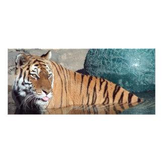 Señal de la foto del tigre de Bengala Lonas