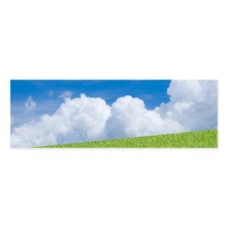 Señal de la hierba y del cielo tarjetas de visita mini
