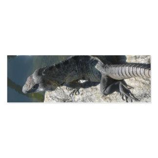 Señal de la roca del lagarto tarjetas de visita