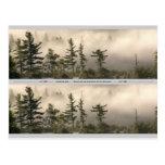 Señal de niebla del prado de la montaña postal