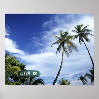 Señal de tráfico de Drive del océano, playa del su Poster