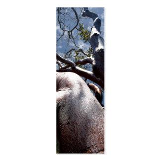 Señal del árbol de caoba tarjetas de visita