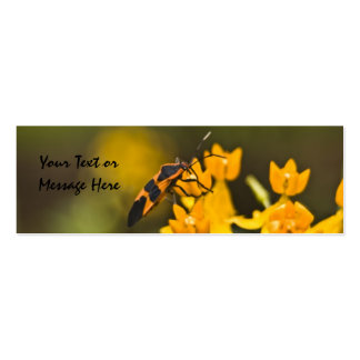 Señal del insecto de la anciano de caja tarjetas de visita mini