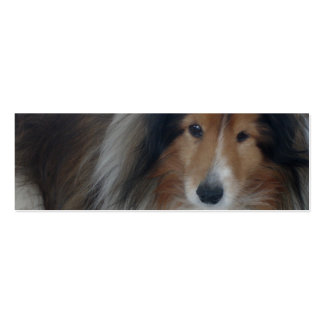 Señal del perro pastor de Shetland Tarjetas De Visita