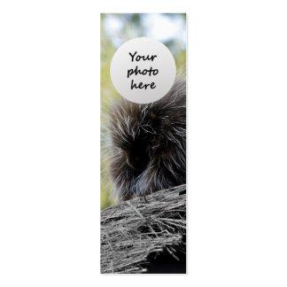 Señal del personalizado del puerco espín del árbol tarjetas de visita mini