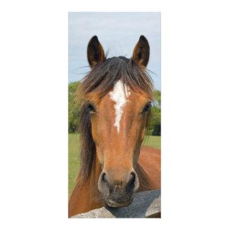Señal hermosa de la cabeza de caballo, idea del re tarjeta publicitaria
