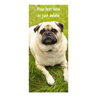 Señal linda del personalizado de la foto del perro lona personalizada